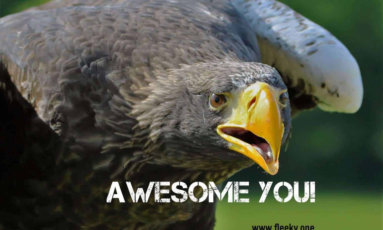 Awesome You